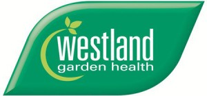 Westland smaller