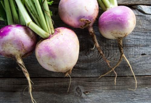 rustic-organic-turnips-on-genuine-wood-background-for-vegetarian-food-628310684-5aa0515e3de4230036db0786