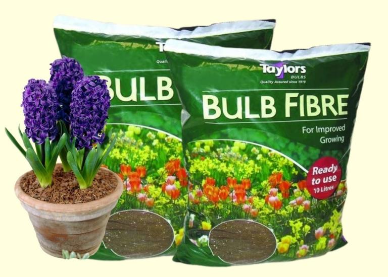 bulb fibre