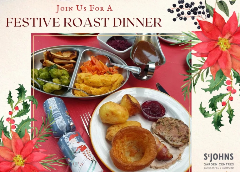 https://stjohnsgardencentre.co.uk/wp-content/uploads/2020/12/Festive-roast-dinner-cutout_768x550_acf_cropped.jpg