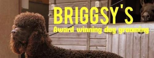 Briggsy's Dog Grooming