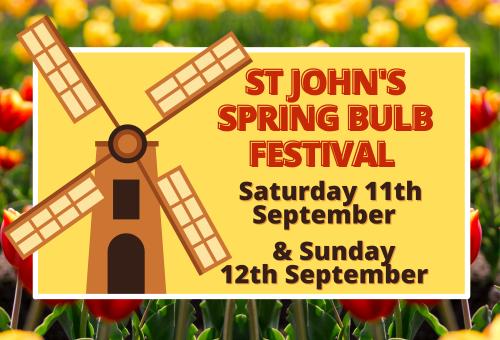 Bulb Festival